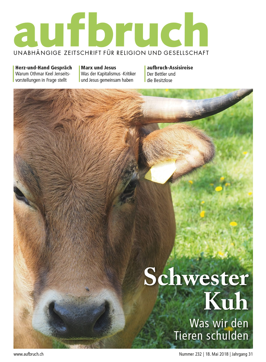 232: Schwester Kuh – Was wir den Tieren schulden