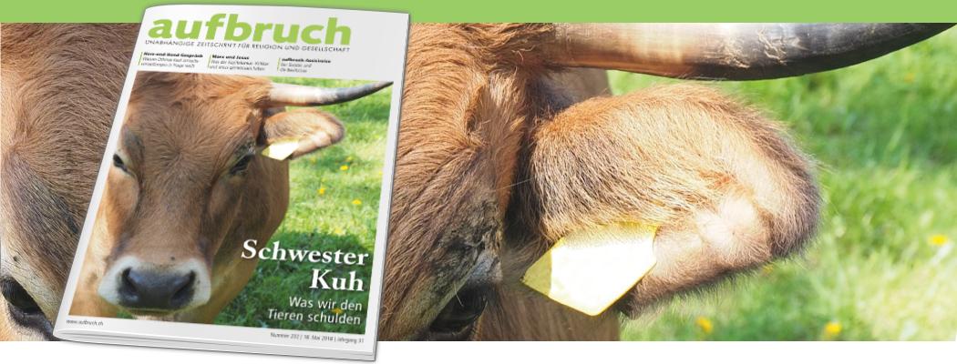 Schwester Kuh – Was wir den Tieren schulden