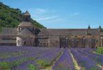 Aufbruch-Kulturreise von Avignon nach Barcelona, 2.-13.5.2022