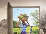 Öko-Landbau: Ausweg aus Hunger und Armut